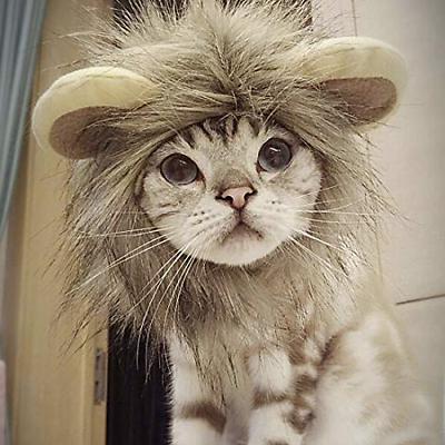 YAWALL Pet Costume Lion Hat Xmas Clothes